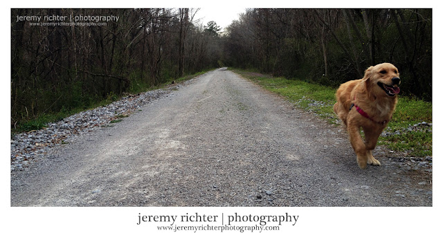 (c) Jeremy Richter | Photography