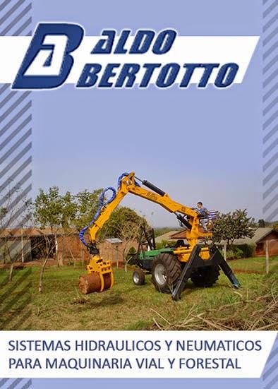 ALDO BERTOTTO