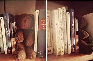 Image: teddy bear bookends