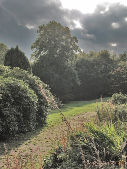 Mysterious Secret Gardens at Ushaw College in County Durham - Photos by North East UK artist Ingrid Sylvestre