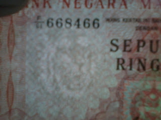 duit bayang harimau
