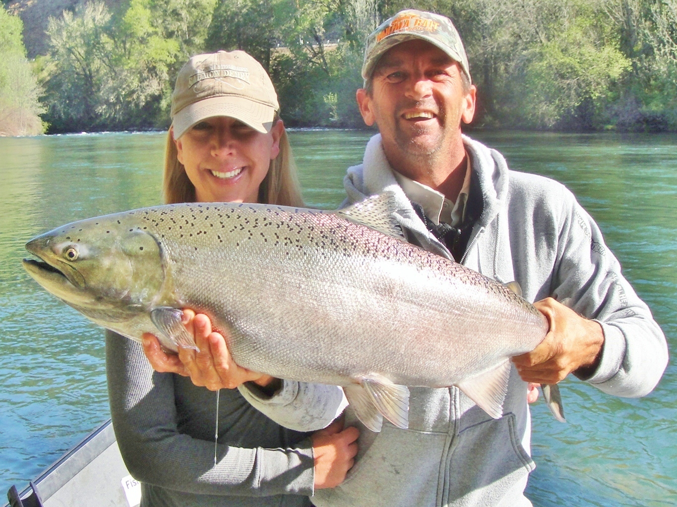 rogue river fishing guide, chinook king salmon, springer