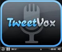 tweetvox-logo