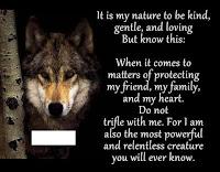 wise wolf facebook meme advice animals
