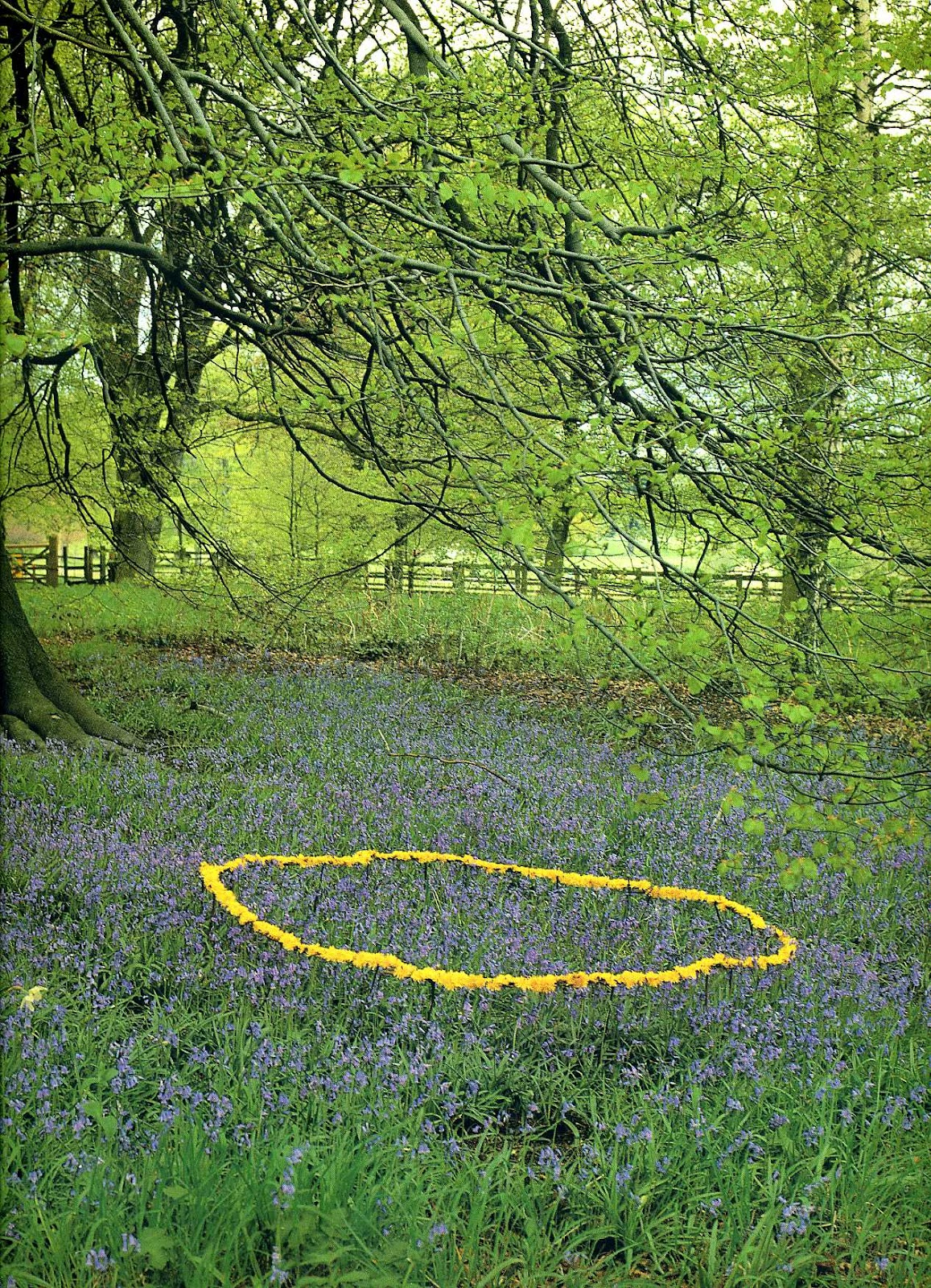 andy goldsworth essay Andy goldsworthy, (born 1956) is a remarkable environmental sculptor (working in the landscape today) in which his uses of natural surroundings create an art form.