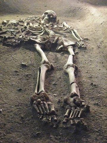 Mor og barn, stenalder-udstilling af skeletter fra Vedbækfundene