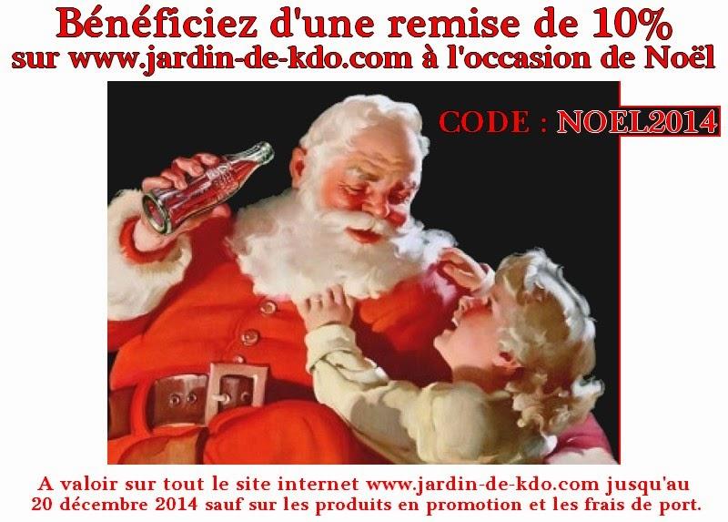 Remise de 10% pour un Noël réussi !