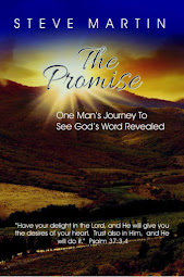 The Promise - from Amazon Paperback $5.95 Kindle $2.99.