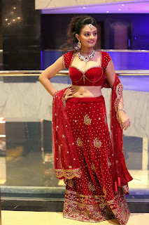 Actress Nikitha Narayan Latest  Pictures in Designer Dress at Fashionology Fashion Show 2013  0051.jpg