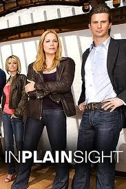 Assistir In Plain Sight Online Dublado e Legendado