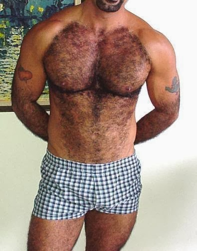 Pc Hot Sey Shirtless Gay Naked Men Guys Beards Hairy Smooth Bears