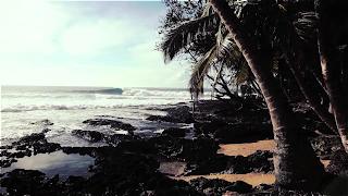 strange beautiful life Indonésie surf