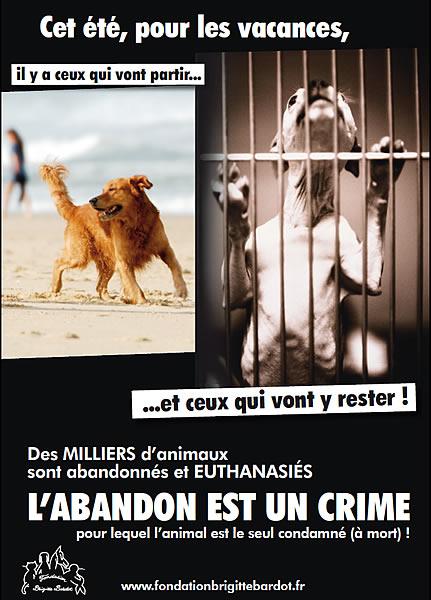 http://3.bp.blogspot.com/-f-ky4btCofg/TjwhkFrwXNI/AAAAAAAAAN4/efUspJI_TuA/s1600/abandon-chien-chat.jpg