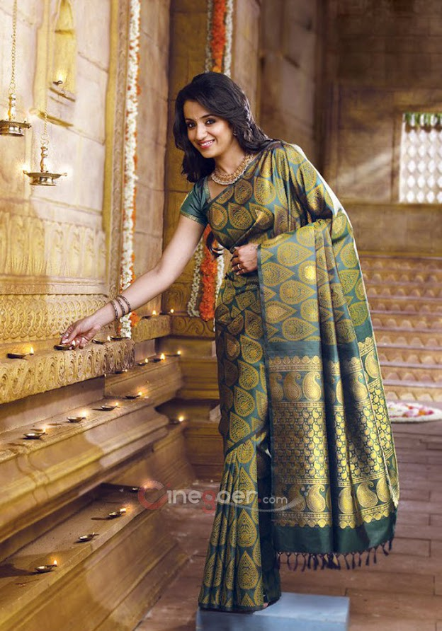 Trisha in silk saree - (2) -  Trisha Samudrika Pattu Pothys Silk Saree PhotoShoot Pics