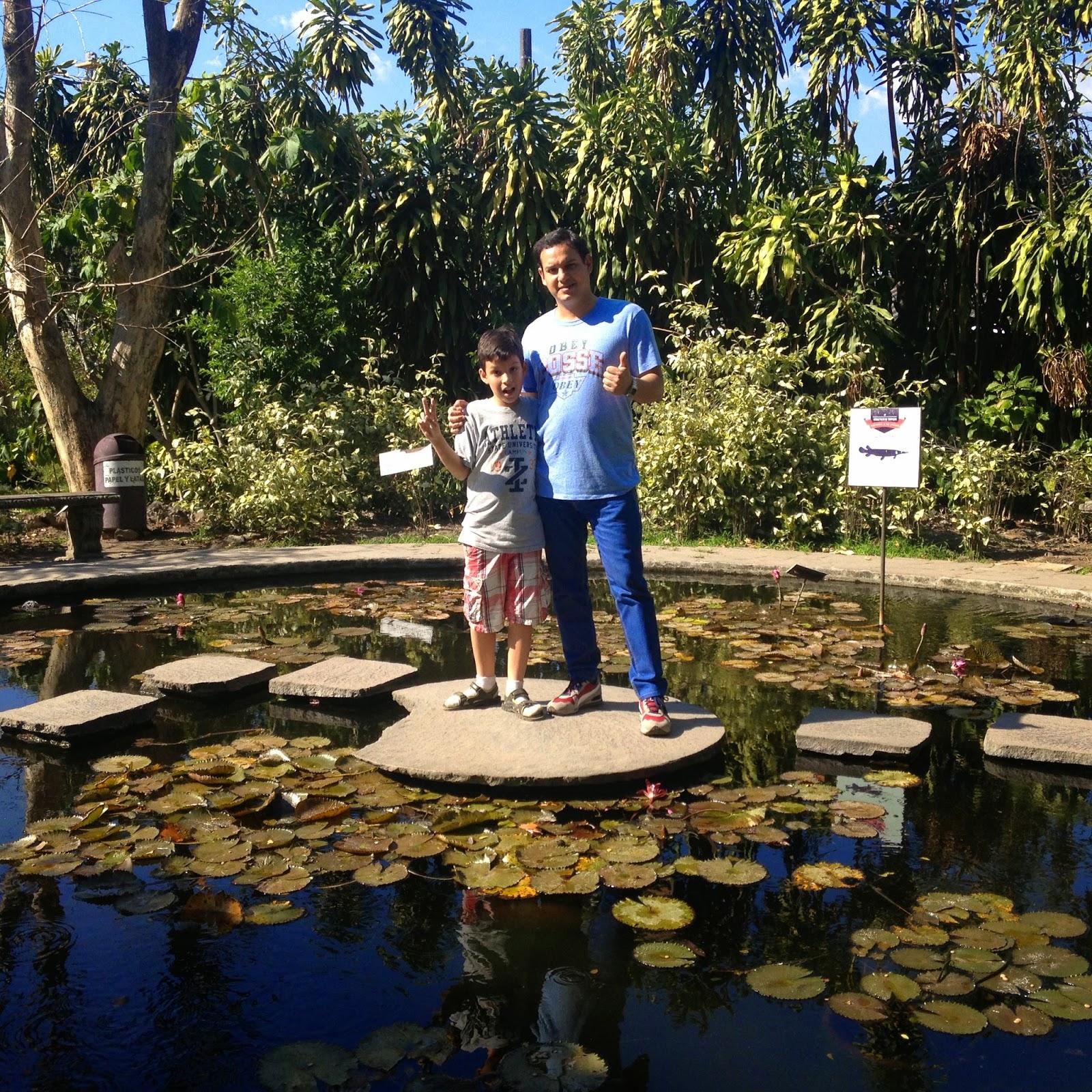 Imagenes jard n bot nico la laguna antiguo cuscatl n - Cosas para el jardin ...