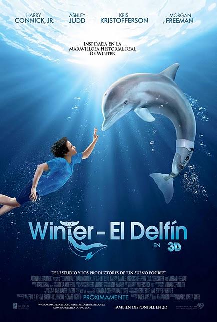 poster winter el delfin