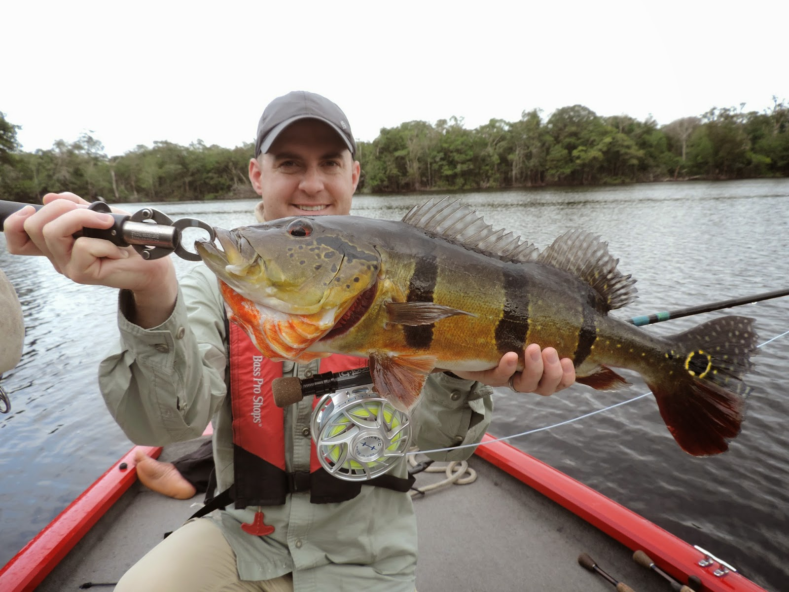 Blue gill on the fly for Bluegill fly fishing