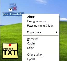 DominioTXT - RevoUninstaller