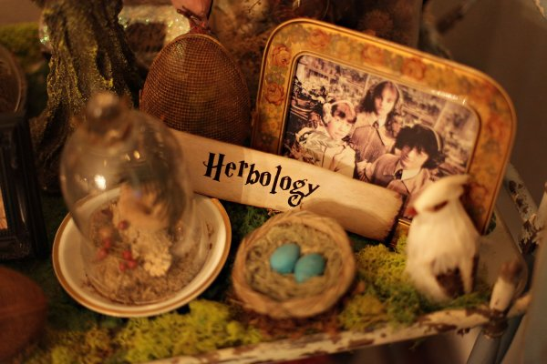Harry Potter Wizarding Party Ideas | Amy's Party Ideas