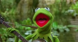 "Kermit the Frog sings ""The Rainbow Connection"" and wants to make millions of people happy..."