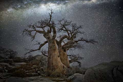 Diamond Nigths - Beth Moon