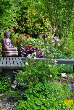 Jacquie's Garden Part 1: Spring