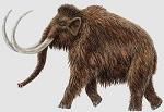 Planean clonar a mamut