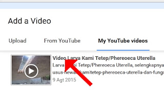 Cara Upload Video Youtube dari Video Youtube Hasil Upload Sendiri