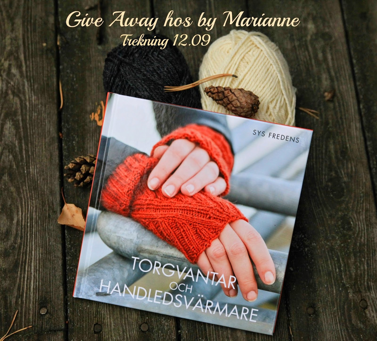 Give Away hos by Marianne.