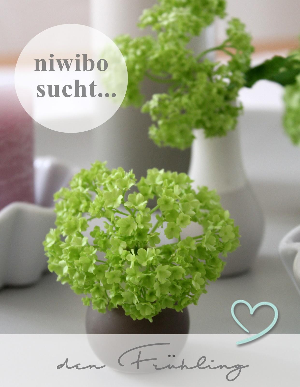 niwibo sucht . . .