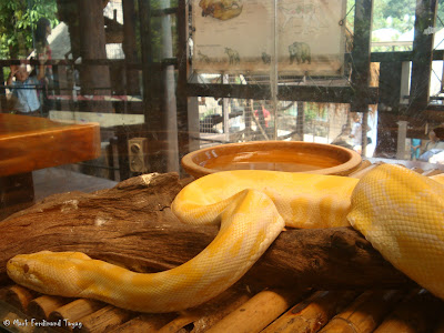 Sunway Lagoon - Wildlife Park Batch 3 Photo 5