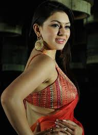 actress hansika motwani wiki hot big boobs n navel hd pics images photos wallpapers52