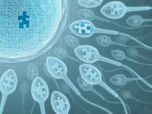 2ww-egg-meet-sperm-please-work-infertility