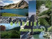 Asturias para disfrutar
