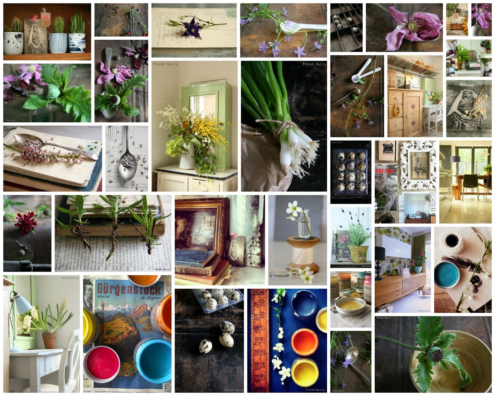 trend-daily blog, caroline davis stylist, moodboard, flowers, colour