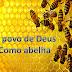O Povo de Deus como abelha