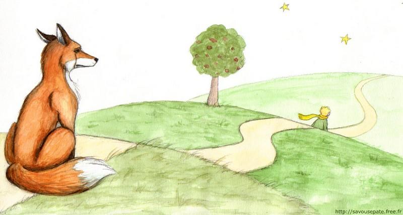 Citaten Uit Le Petit Prince : Le petit prince
