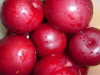 Ameixa, Prunus doméstica