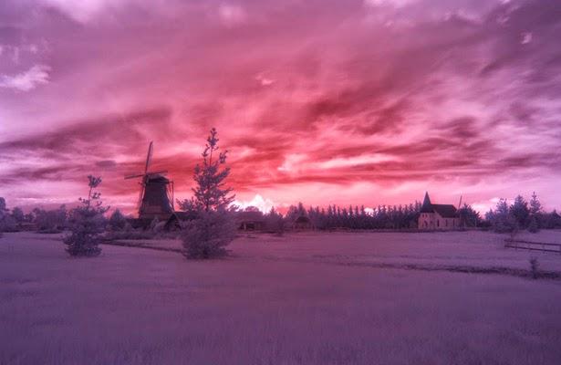 美麗紅外攝影照片 - 亮麗 - 亮麗的博客