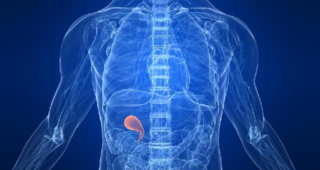 Medicamento creado por Premio Nobel japonés podría combatir cáncer
