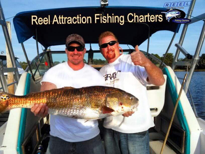 Gulf shores fishing reports for Gulf shores fishing report