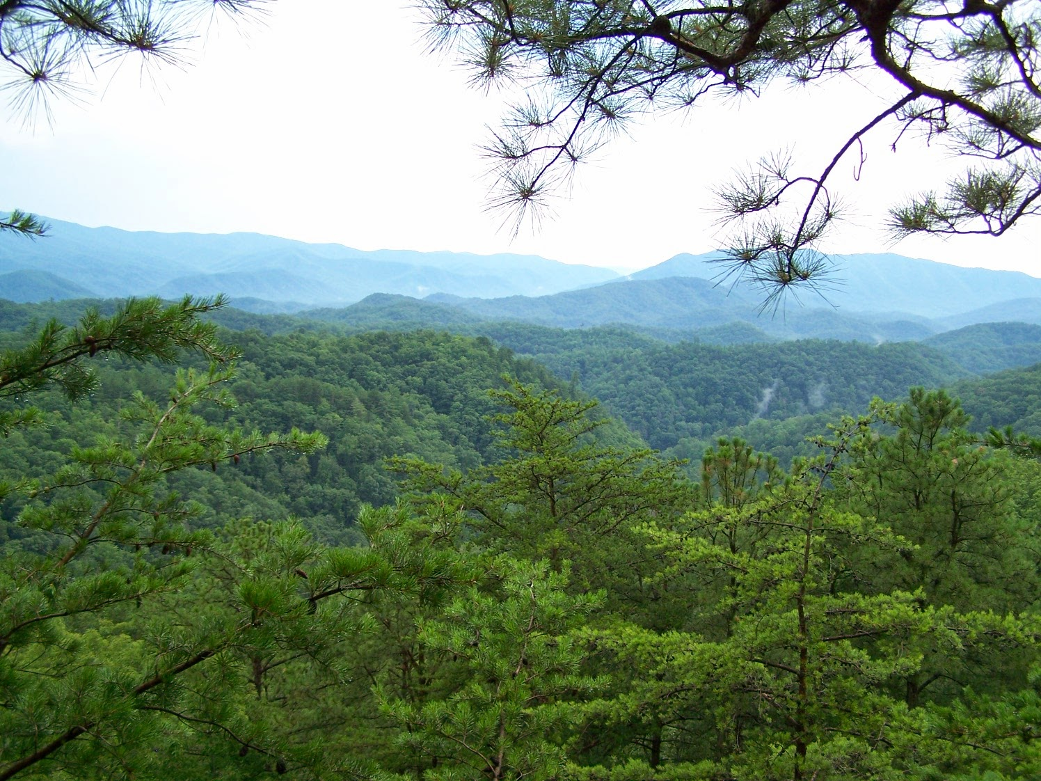 Beautufil Views at Next to Heaven Ranch