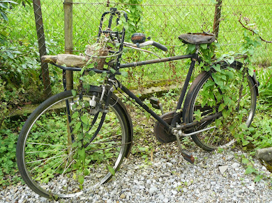 auch ein altes fahrrad bringt dich ans ziel