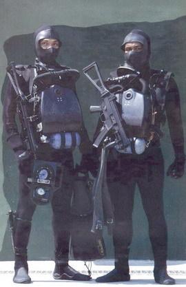 frogman combat diver gerard butler lena headey sex scene