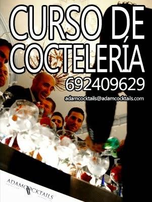 Curso Cocteleria Sevilla