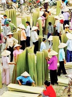 Chiếu trúc Thái Bình