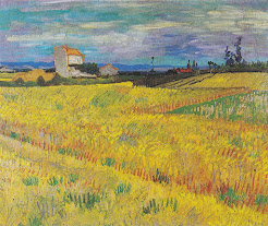 Wheatfields