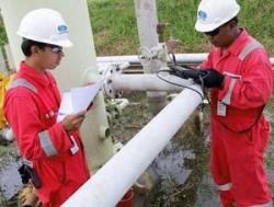 lowongan kerja surveyor indonesia 2013