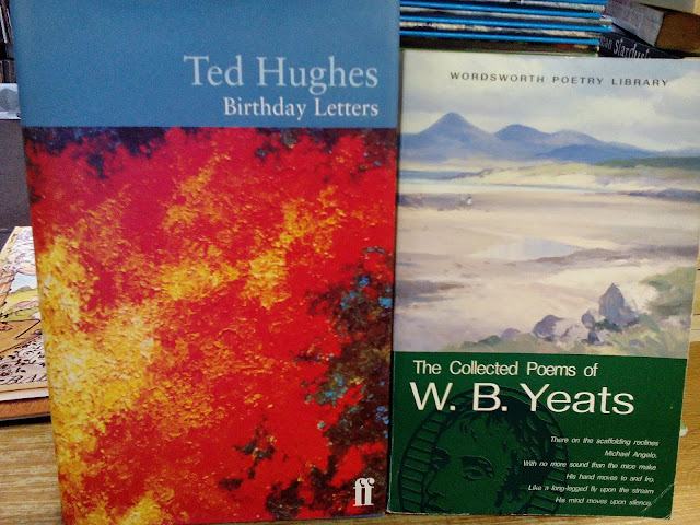 trophies ted hughes birthday letters essay Birthday letters essay topics: ted hughes sample essay – birthday letters ted hughes develops a perspective which cultivates the sympathy of the responder.