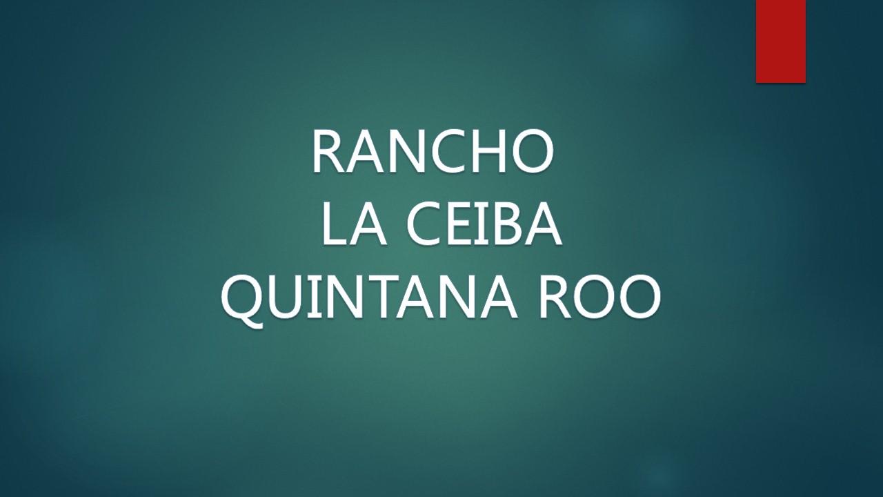 WEB RANCHO LA CEIBA QUINTANA ROO
